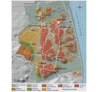 Carte des sols de Saint-Estèphe